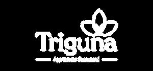 triguna projects logo
